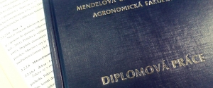Diplomky
